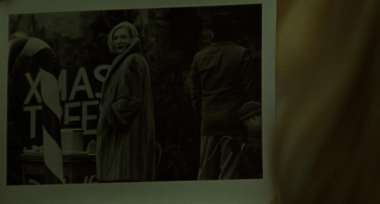 Fig. 31: The tree lot photograph in Therese's kitchen in CAROL (Todd Haynes, USA 2015).