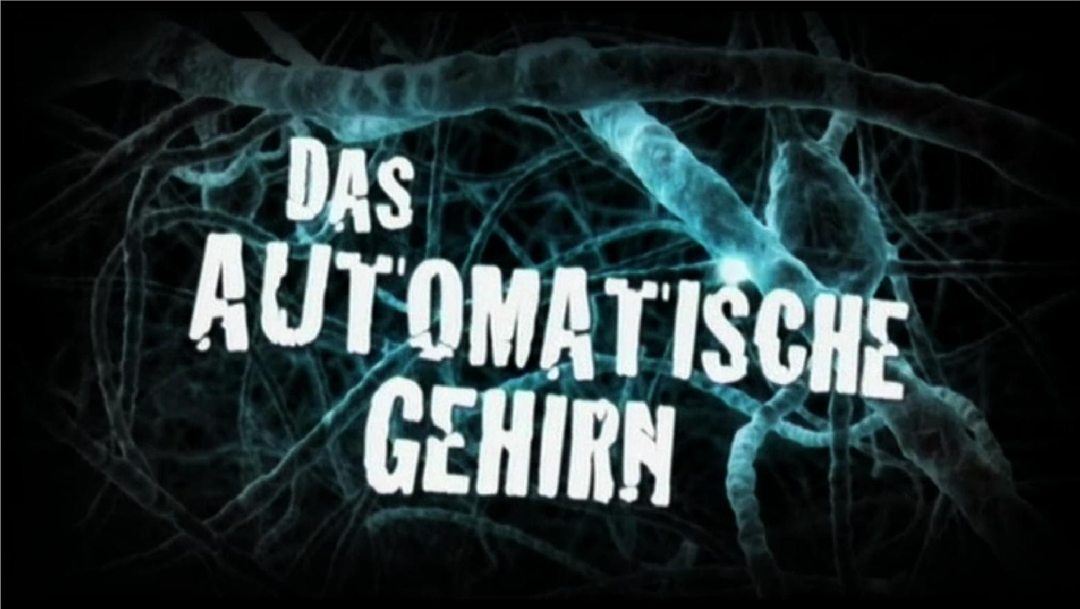 Fig. 2: DAS AUTOMATISCHE GEHIRN, D 2011, Directors: F. D'Amicis, P. Höfer, F. Röckenhaus.